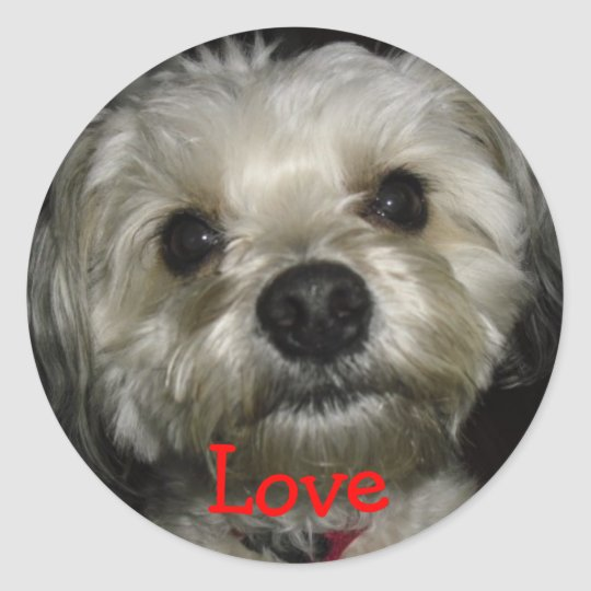 Puppy Love I Love My Dog Cute Classic Round Sticker