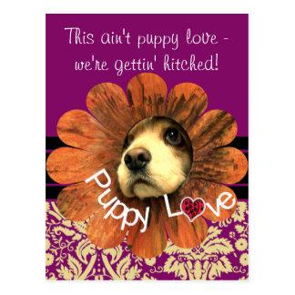 Puppy Love Peeking Out of a Flower Postcard