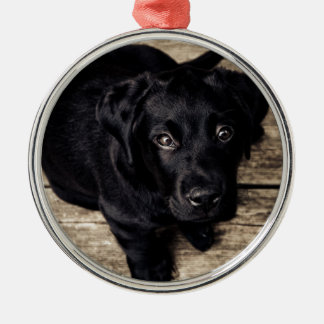puppy love round metal christmas ornament