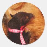 Puppy Love Round Sticker