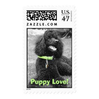 Puppy Love Stamp