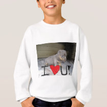 Puppy loves you sweatshirt