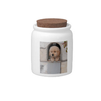 Puppy Mail Candy Jars