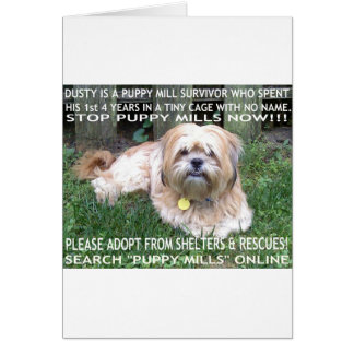 Puppy Mill Survivor - Give Mill Dogs a 2nd Chance! Card