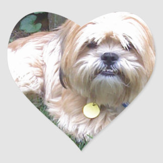 Puppy Mill Survivor - Give Mill Dogs a 2nd Chance! Heart Sticker