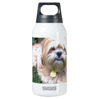 Puppy Mill Survivor - Give Mill Dogs a 2nd Chance! Insulated Water Bottle