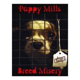 Pet adoption flyers programs zazzle puppy mills flyer pronofoot35fo Images