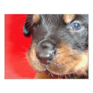 Puppy Nose Best Card