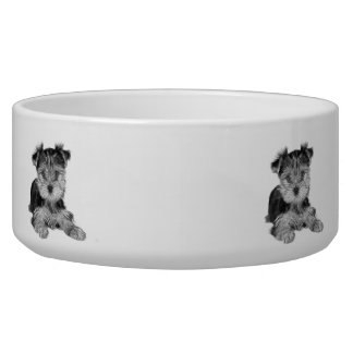 Puppy of the Yorkshire Terrier Dog Water Bowls