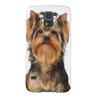 Puppy of the Yorkshire Terrier Galaxy S5 Cover