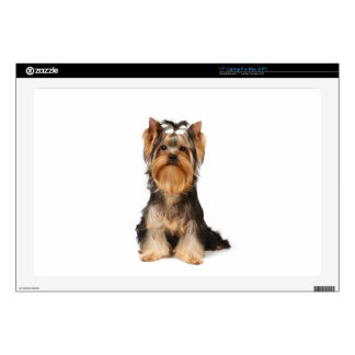 """Puppy of the Yorkshire Terrier 17"""" Laptop Decal"""