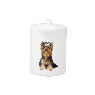 Puppy of the Yorkshire Terrier Teapot