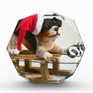 Puppy on a Sled Acrylic Award