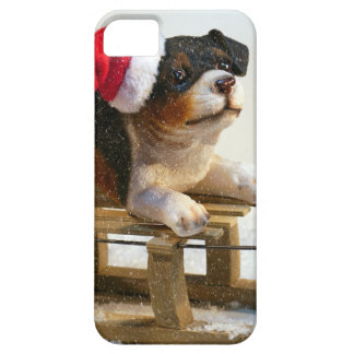 Puppy on a Sled iPhone SE/5/5s Case
