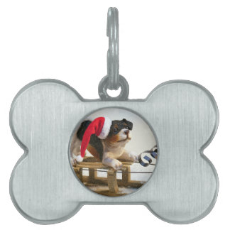 Puppy on a Sled Pet Name Tag