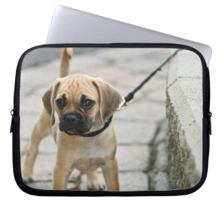 Puppy on leash laptop sleeves