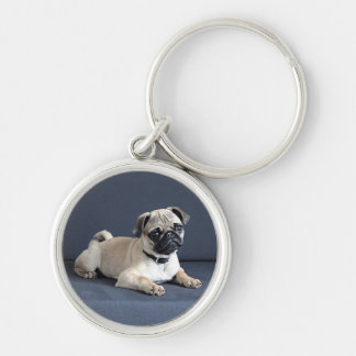 Puppy On Lounging Couch Keychain