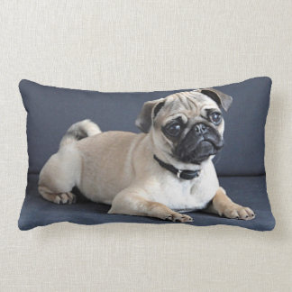 Puppy On Lounging Couch Lumbar Pillow