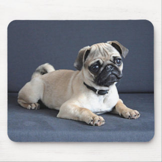 Puppy On Lounging Couch Mouse Pad