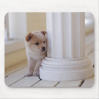 Puppy peeking out from behind a column mouse pad