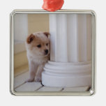 Puppy peeking out from behind a column christmas tree ornament