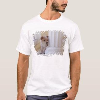 Puppy peeking out from behind a column T-Shirt