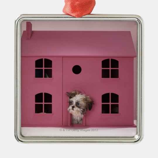 Puppy peering out of doll's house metal ornament