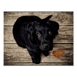 puppy pet lab dog animal face cute heart poster