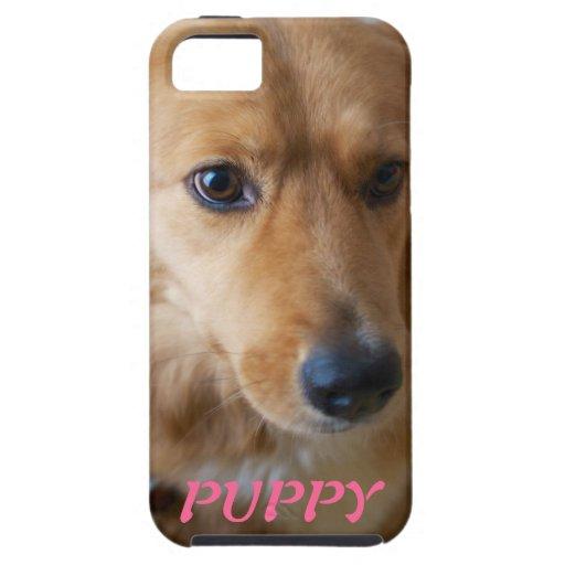 Puppy Pet Photo iPhone 5 Case