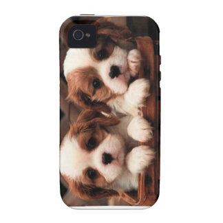 Puppy phonecase iPhone 4 cases