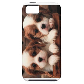 Puppy phonecase iPhone 5 cover