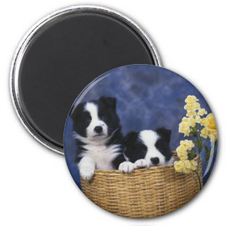 Puppy Picture Refrigerator Magnet