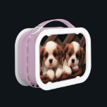 """Puppy Pictures 2 Lunchbox<br><div class=""""desc"""">These two gorgeous puppies are King Charles Cavalier Spaniels. Their colouring is called Blenheim which is classed as a chestnut and white. Here they are together in a brown wicker basket These puppies are on many different products in my store,  Myshelle</div>"""