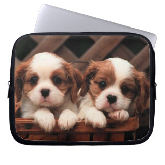 Puppy Pictures Computer Sleeves