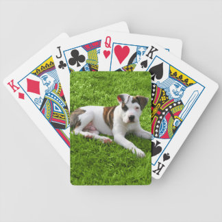 Puppy Pit Bull T-Bone Bicycle Playing Cards