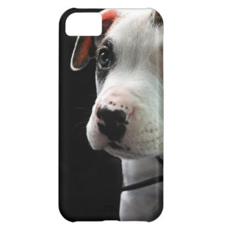 Puppy Pit Bull T-Bone Cover For iPhone 5C