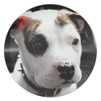 Puppy Pit Bull T-Bone Dinner Plate
