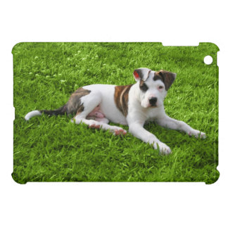 Puppy Pit Bull T-Bone iPad Mini Cover