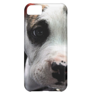 Puppy Pit Bull T-Bone iPhone 5C Case