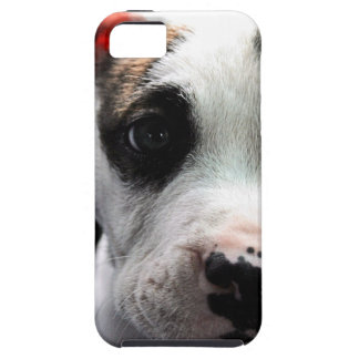 Puppy Pit Bull T-Bone iPhone SE/5/5s Case
