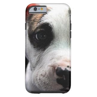 Puppy Pit Bull T-Bone Tough iPhone 6 Case