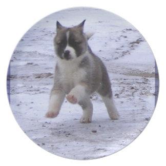 Puppy Plate