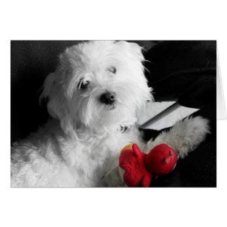 Puppy Play Card