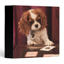 Puppy Plays Cards Binder