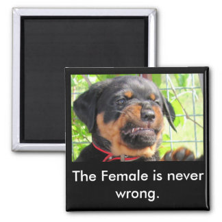 Puppy PMT 2 Inch Square Magnet
