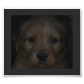 PUPPY POSTER (GOLDEN RETRIEVER)