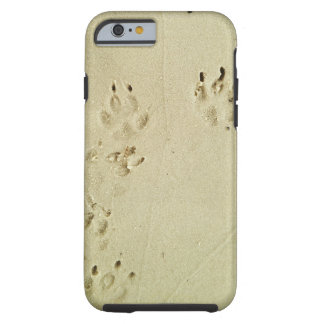 Puppy prints in the sand tough iPhone 6 case