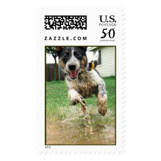 Puppy Puddles Postage