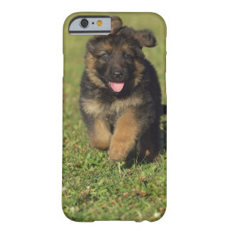 Puppy Running Barely There iPhone 6 Case