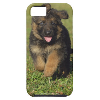 Puppy Running iPhone SE/5/5s Case